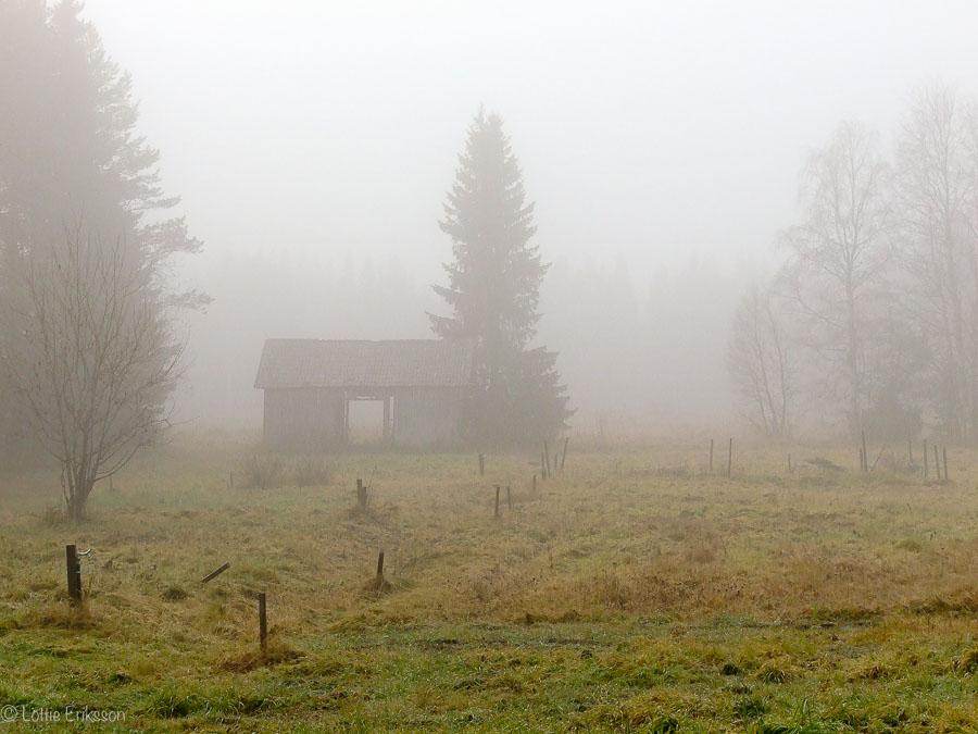 FoggyFieldOldBarn